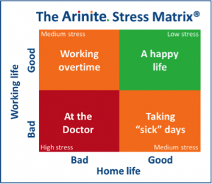 arinite stress matrix